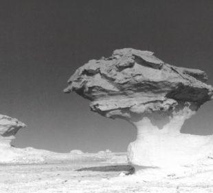 Formacje Skalne na Białej Pustyni w zachodniej części Egiptu, fot. B. Prochwicz-Studnicka